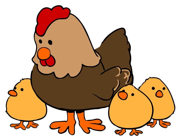 Tả đàn gà con theo mẹ đi kiếm mồi